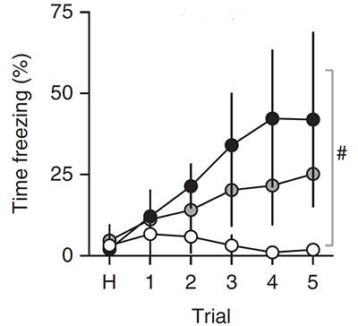 Autism Therapy Social Behavior Restored >> Sfari Identification Of An Amygdala Circuit Involved In