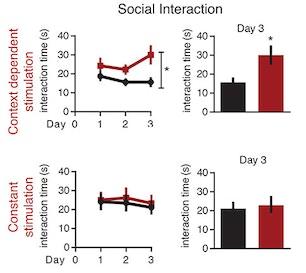 Oxytocin Found To Stimulate Social >> Sfari Gating Of Social Reward By Oxytocin In The Ventral