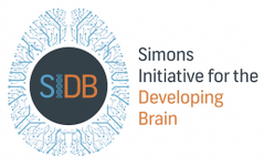 Simons Initiative for the Developing Brain (SIDB) logo